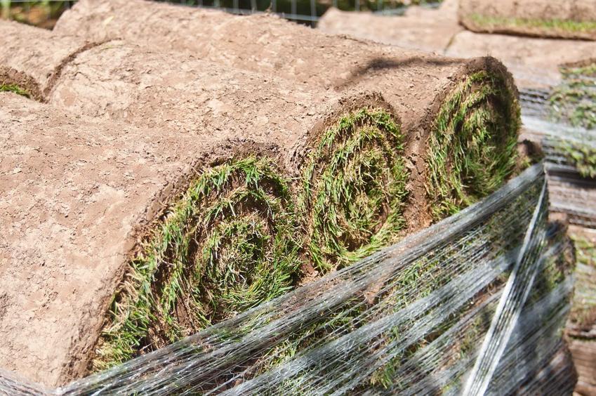 Trawa z rolki w wielu rolkach ułożonych na sobie i owiniętych folią gotowa do transportu na paletach i rozłożenia w nowym miejscu