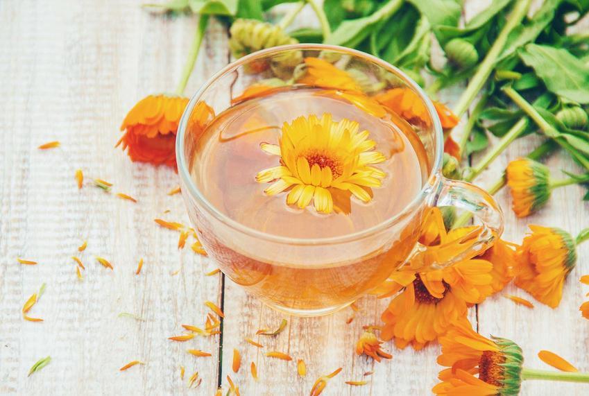 Herbata z nagietka to roślina lecznicza, która usprawnia działanie przewodu pokarmowego. Jest smaczna i bardzo skuteczna na wrzodziejące zapalenie żołądka.