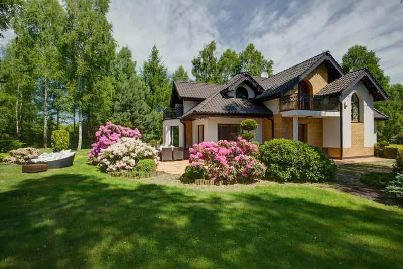 Ogród z dużymi krzewami hortensji i zadbanym trawnikiem, a także kilka ciekawych pomysłow na przepiękny ogród