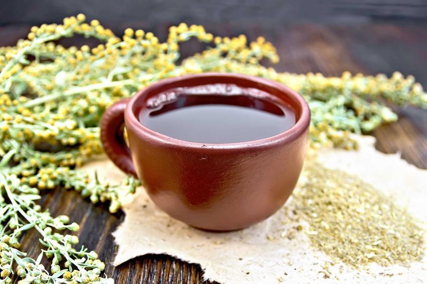 Herbata z piołunu o właściwościach leczniczych w dużej brązowej filiżance obok gałązek piołunu i kwiatów