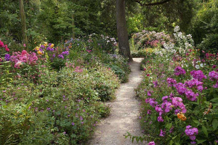 Ogród wiejski to jeden z najlepszych pomysłów na małą powierzchnię. Wiele kwiatów swojskich nie wymaga szczególnej pielęgnacji.