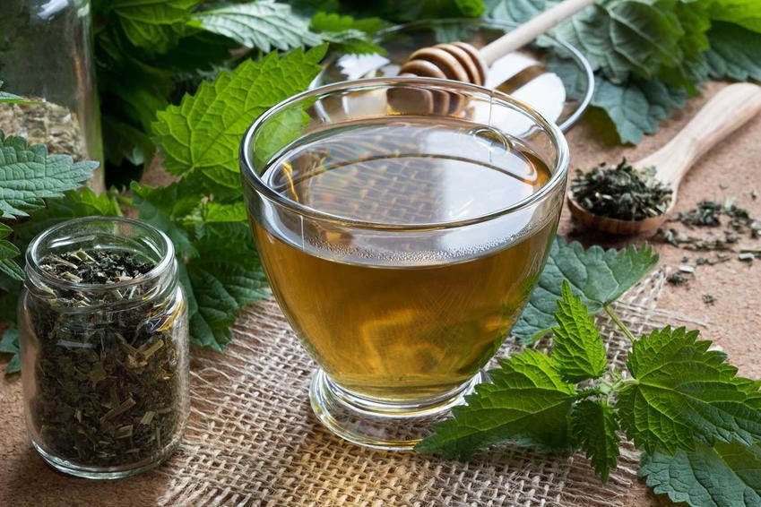 Pokrzywa ma bardzo duże właściwości lecznicze. Robi się z niej herbatkę, którama bardzo silne działnie oczyszczające. Można ją przygotować samodzielnie, z zebranych listków.