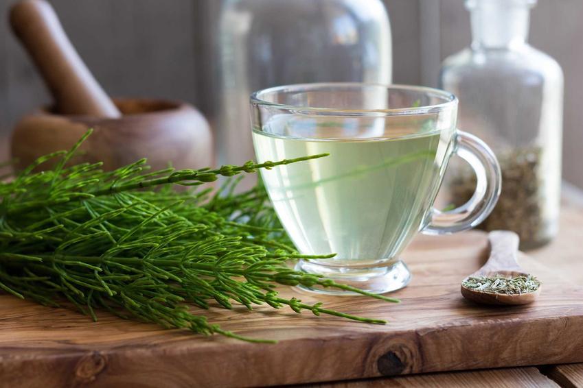 Zastosowanie skrzypu polnego jest barzo szerokie. Najcześciej wykorzystuje się różnego rodzaju herbatki i napary ze skrzypu.