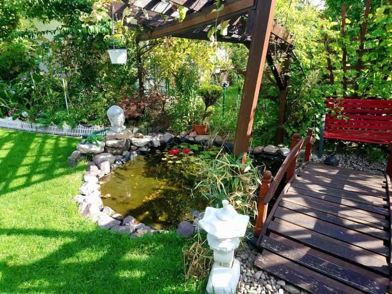 Pergola z pnącymi roślinami do ogrodu, a także informacje, jak przygotować piękne ogrody przydomowe krok po kroku, najlepsze inspiracje