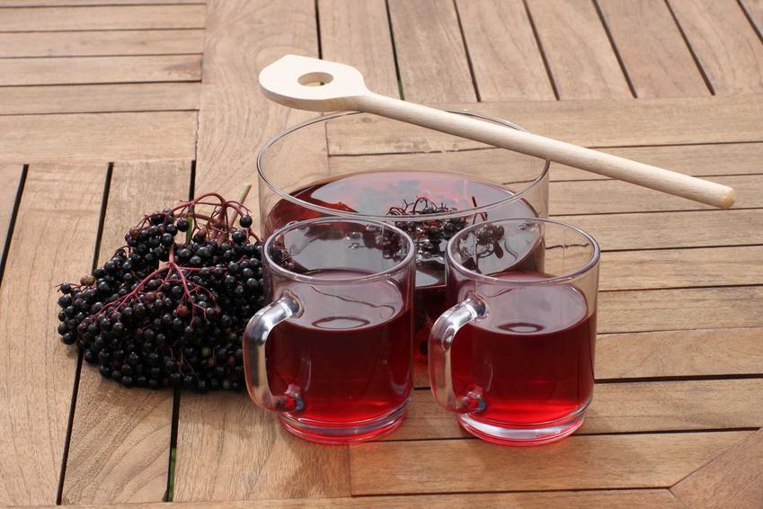 Sok z owoców czarnego bzu jest bardzo smaczny, a na dodatek ma właściwości lecznicze. Zastosowanie owoców czarnego bzu jest bardzo szerokie.