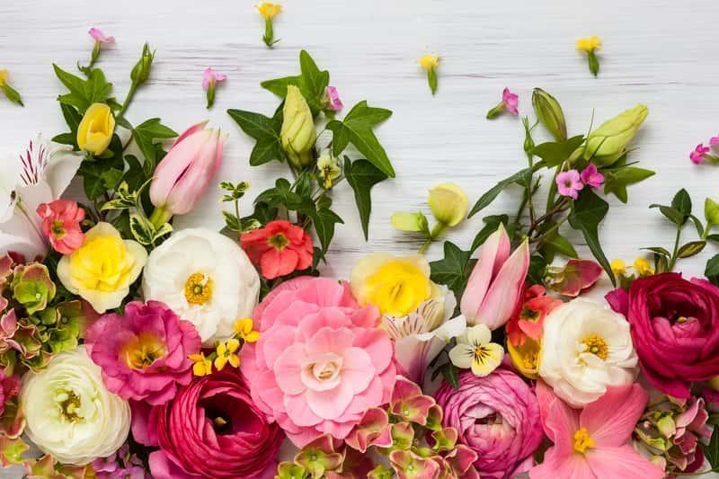 Kompozycja kwiatów różówych na stole, a także inne kompozycje kwiatowe - najlepsze sposoby na piekne i udane bukiety i kompozycje do dekoracji