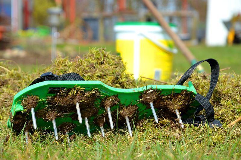 Pielęgnacja trawnika po zimie powinna być skupiona wokół aeracji i wertykulacji. Warto zadbać take o odpowiednie nawożenie trawy.