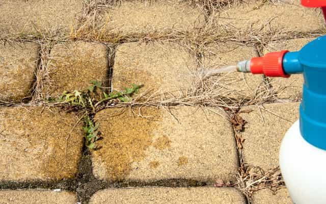 Opryski chwastów w kostce brukowej herbicydam, a także herbicydy na chwasty, popularne rodzaje i producenci, zastosowanie i ceny