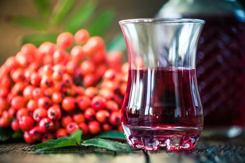 Wino z jarzębiny w kieliszku obok gron czerwonych owoców jarzębiny, a także przepisy na sok i wino z jarzębiny krok po kroku