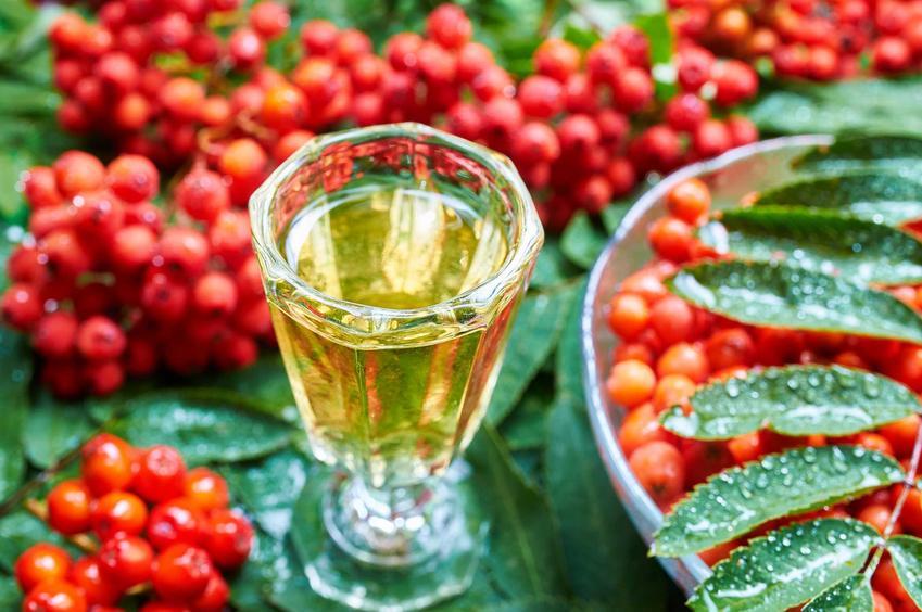 Nalewka z jarzębiny to lekko kwaskowaty, smaczny likier. Można go zrobić z owoców lub kwiatów jarzębiny - nie jest to trudne. Przepisy nie wymagają doświadczenia.