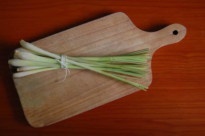 Trawa cytrynowa, czyli palczatka cytrynowa na desce do krojenia, a także uprawa rośliny w ogrodzie, warunki, wymagania