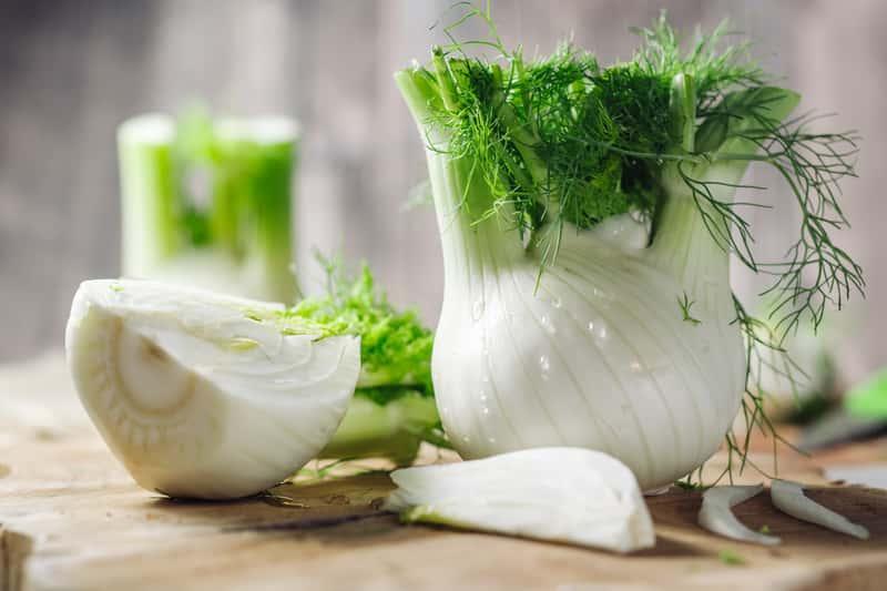 Fenkuł  włoski czy też koper włoski - warunki uprawy, wymagania, stanowisko, pielęgnacja oraz właściwości lecznicze i kulinarne - porady