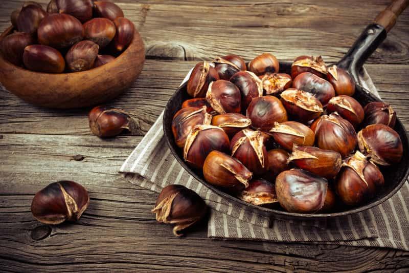 Kasztany jadalne gotowe do zjedzenia, a także uprawa kasztana jadalnego w Polsce: wymagania, stanowisko, sadzenie, pielęgnacja