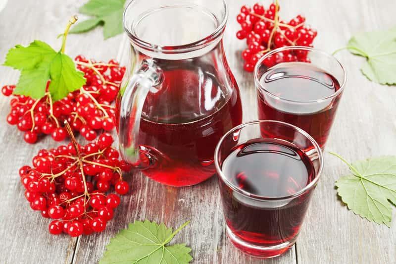 Nalewka z kaliny rozlana do dużych kieliszków, a także przepisy na najlepszą nalewkę z owoców kaliny w spirytusie lub z dodatkami