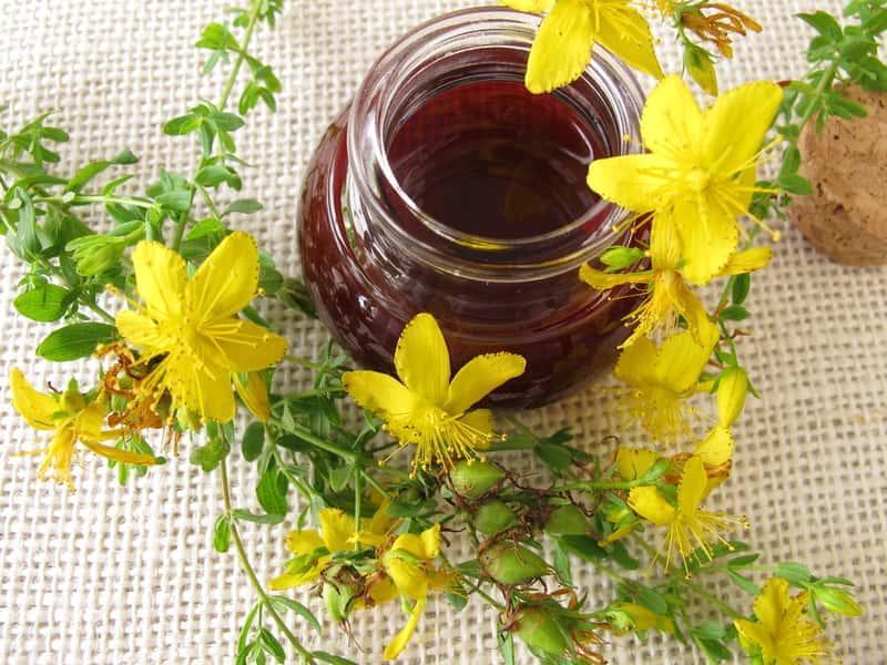 Olej z dziurawca w małej buteleczce, a także przepis i przygotowanie oleju z dziurawca krok po kroku oraz jego właściwości lecznicze