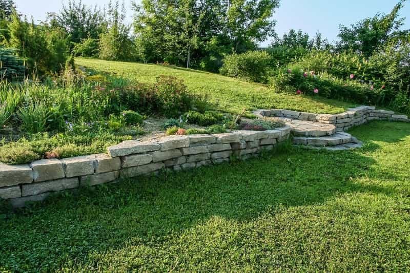Kompozycja ogrodowa z wykorzystaniem tawuły brzozolistnej, z łac. Spirea betulifolia - warunki uprawy, wymagania, stanowisko, zastosowanie, pielegnacja - porady