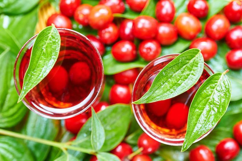Nalewka z czereśni na soku z owoców w ozdobych kieliszkach z owocami jasnoczerwonej czereśni, ozdobionymi jasnozielonymi, świeżymi listkami z drzewka
