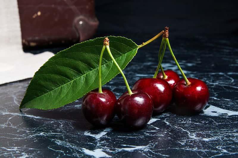 Czereśnie odmiany Rivan, a także opis czereśni Rivan, sadzenie, podlewanie, uprawa i pielęgnacja, a także opis krok po korku
