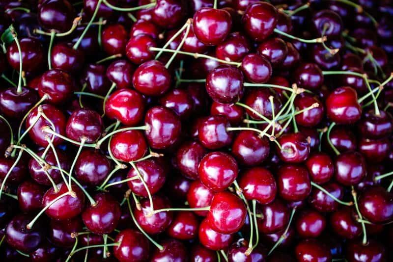 Owoce czereśni kolumnowej, czyli opis, odmiany, rodzaje czereśni oraz uprawa, sadzenie, stanowisko, pielęgnacja czereśni i jej wykorztsyanie