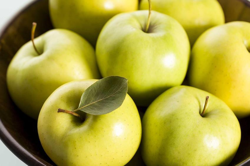 Jabłka Golden Delicious to najbardziej popularna odmiana. Są bardzo smaczne, mają zieloną skórkę i bardzo wiele smaku. Ich uprawa nie jest wymagająca