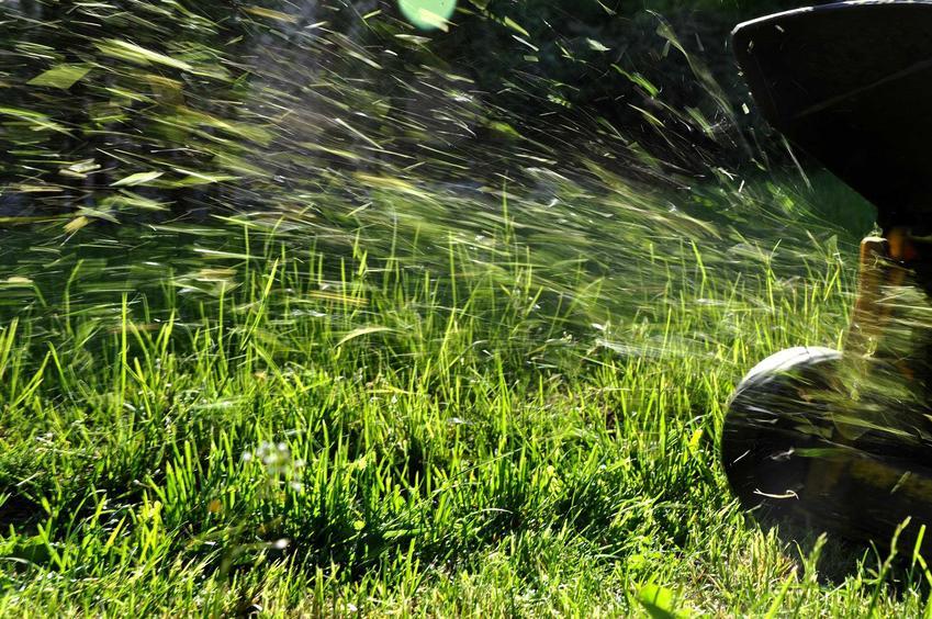 Sezonowe koszenie trawy po zimie jest ważne dla kondycji trawnika. Dzięki temu będzie się bardziej krzewił i zyska na kolorze.