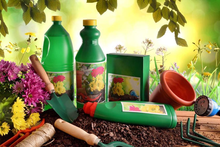 Substral do nawożenia roślin to jeden z najlepszych nawozów mineralncyh. Nadaje się do warzyw, owoców i trawnika