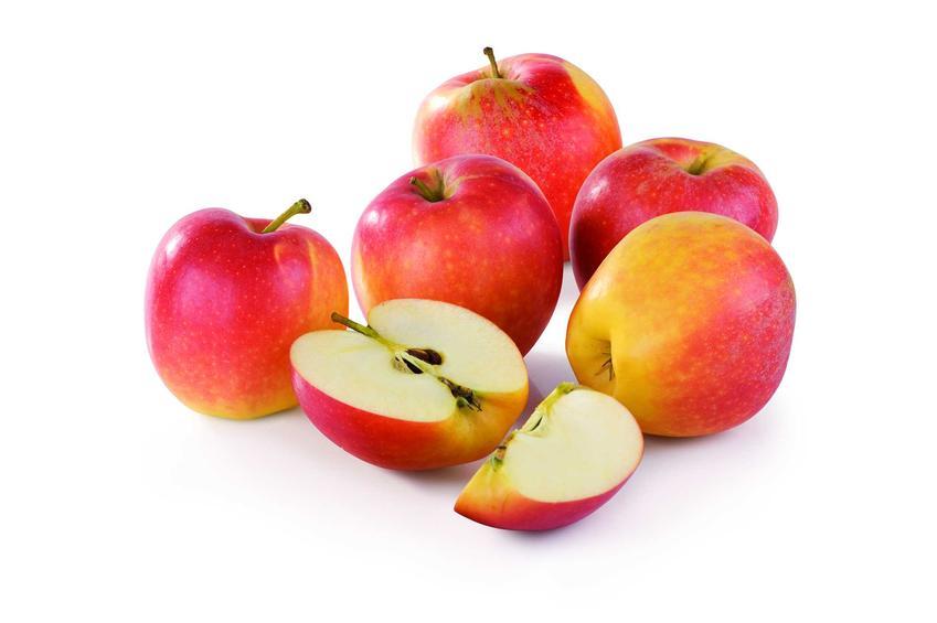 Najlepsze odmiany jabłek w Polsce – przegląd najpopularniejszych gatunków