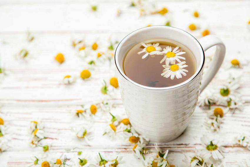Herbata z rumianku to świetne rozwiązanie na wiele schorzeń. Ma właściwości lecznicze i bardzo szerokie zastosowanie
