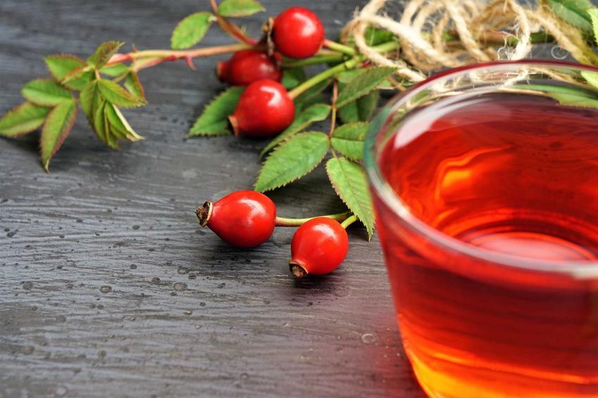 Herbata z dzikiej róży, a także wykorzystanie dzikiej róży, właściwości lecznicze, napoje, zastosowanie, smak