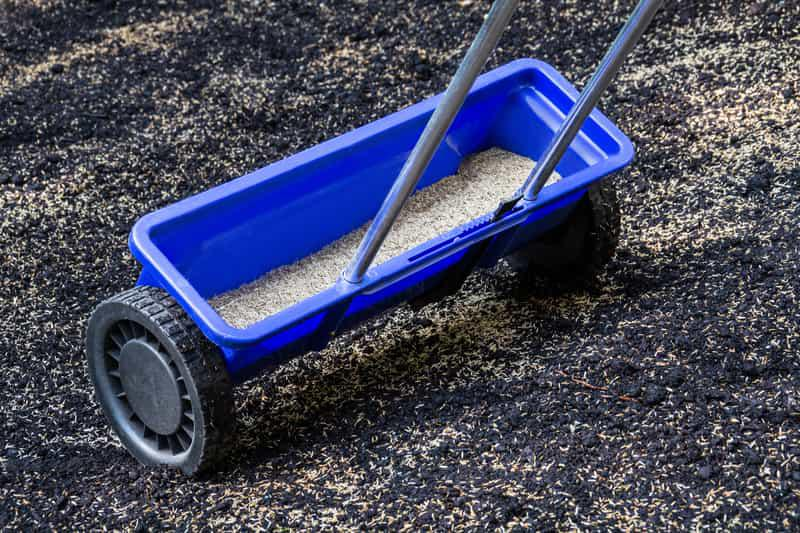 Wysiew trawy przy pomocy specjalnego siewnika na podłożu, a także najlepsza ziemia pod trawnik i jej zastosowanie krok po kroku