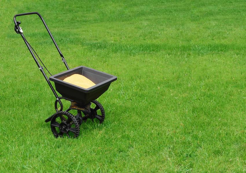Nawożenie trawnika przy zastosowaniu specjalnego urządzenia oraz porady, czym nawozić trawnik i kiedy najlepiej to robić