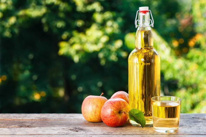 Nie tylko wino z jabłek, czyli nalewka z jabłek w butelce obok świezych jabłek oraz sprawdzony przepis