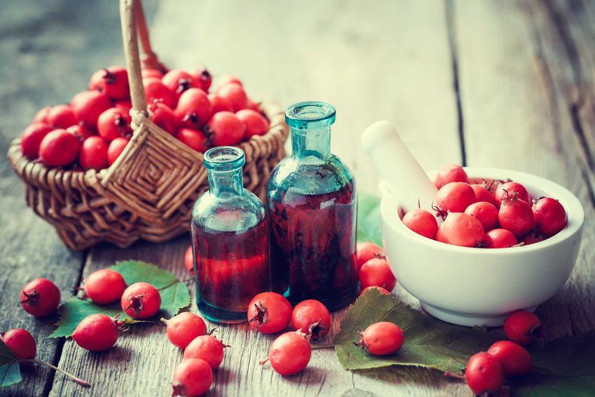 Wino z głogu oraz świeże owoce głogu, a także przepis na wino głogowe z dziką różą lub z innymi składnikami