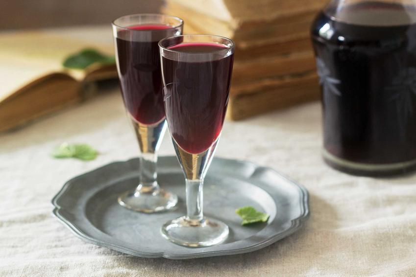 Nalewka z jagód w kieliszkach oraz najlepszy przepis na nalewkę z jagód leśnych na spirytusie, z miodem i z dodatkami