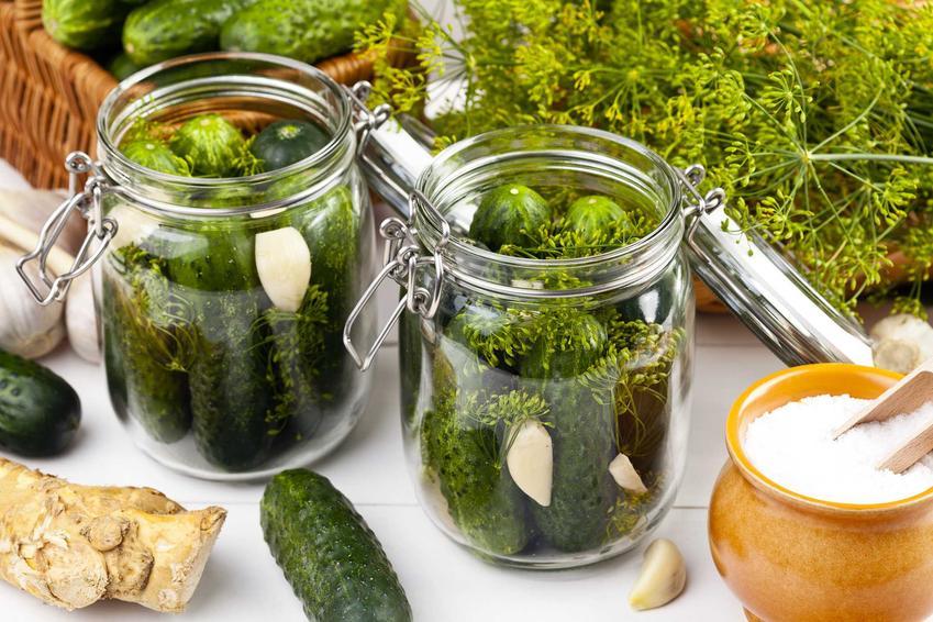 Ogórki kiszone w słoikach, a dokładniej gotowe do zalania i kiszenia oraz najlepsze przepisy na kiszenie ogórków