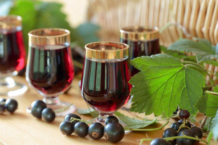 Wino z czarnej porzeczki w kieliszkach oraz owoce porzeczki, a także przepis na wino domowej roboty oraz przygotowanie wina w domu