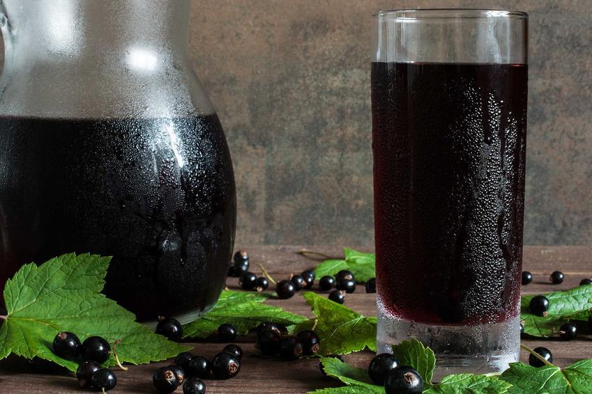Sok z czarnej porzeczki w dzbanku i porzeczkowy sok w szklance oraz najlepsze przepisy na niego i sposoby przechowywania