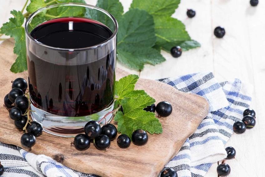 Sok z czarnej porzeczki, czyli porzeczkowy sok w szklance, najlepsze przepisy oraz sposoby przechowywania