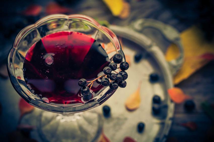 Wino z aronii w kieliszku w towarzystwie owoców oraz przepis na wino aroniowe krok po kroku i jego właściwości odżywcze