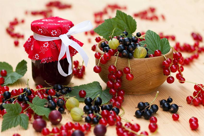Pyszny dżem z czarnej porzeczki i agrestu w słoiku oraz świeże owoce w miseczce, a także najlepsze przepisy na dżemy porzeczkowe