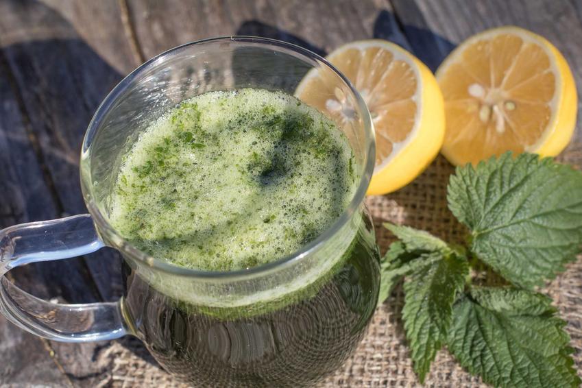 Sok z pokrzywy w szklance wyciśnięty w sokowirówce oraz najlepszy przepis na nalewkę z pokrzywy i jej właściwości lecznicze
