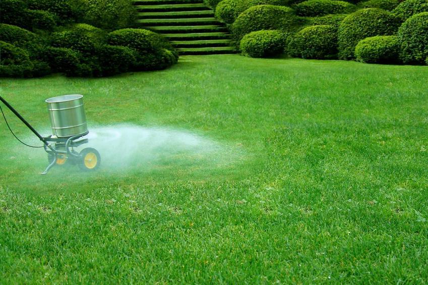 Nawożenie trawnika przy pomocy nawozu do trawy rozpylanego w ogrodzie, a także polecane nawozy do trawy
