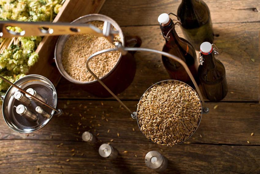Warzenie piwa w domu, czyli niezbędne składniki oraz domowy sposób iprzepisy, jak zrobić piwo w domu krok po kroku