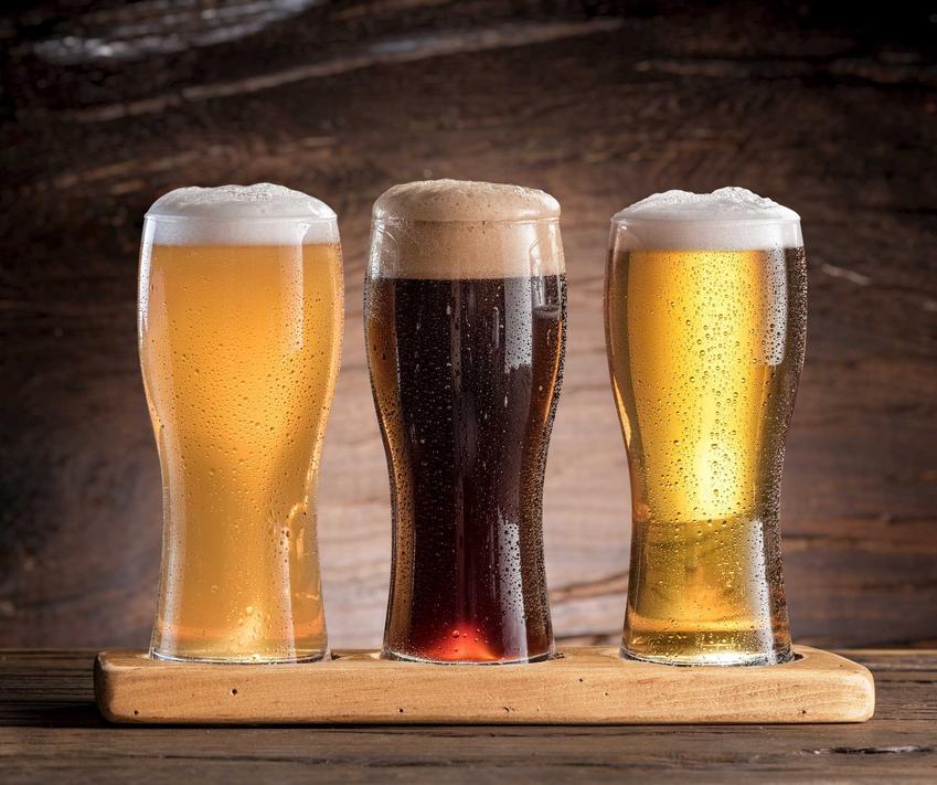 Gotowe piwo domowe w kuflach oraz praktyczne porady, jak zrobić piwo w domu krok po kroku, receptura i najlepsze składniki