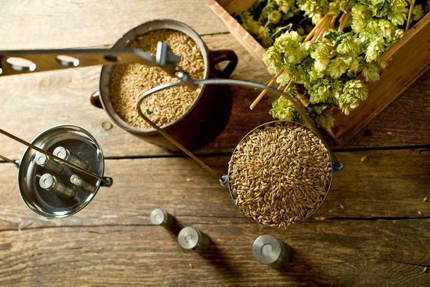 Składniki na piwo domowe, w tym słód i chmiel, oraz porady, jak zrobić piwo w domu, najlepsza receptura i przepis na dobre piwo domowe
