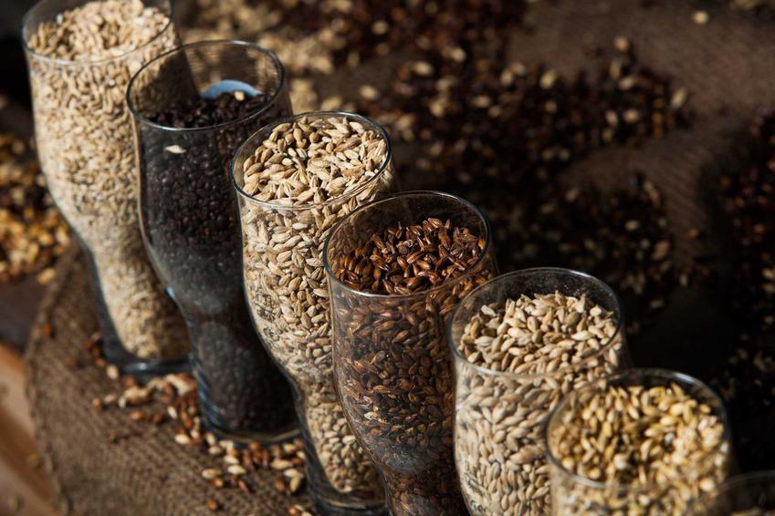 Różnego rodzaju ekstrakty słodowe w kuflach na piwo oraz zastosowanie ekstraktu słodowego w produkcji piwa