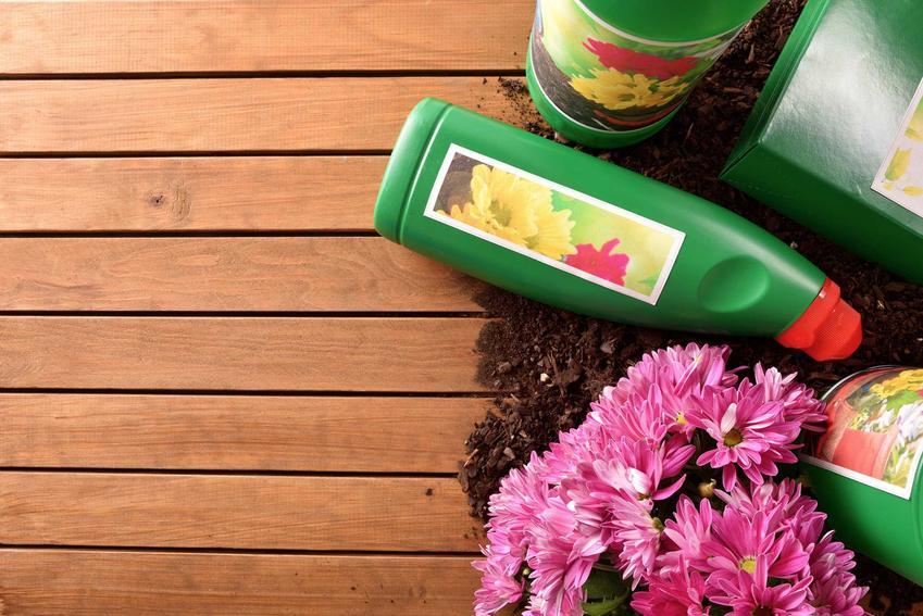 Hydrożel ogrodniczy czy też hydrożel do kwiatów doniczkowych na tle drewnianej łatwki oraz zasady stosowania