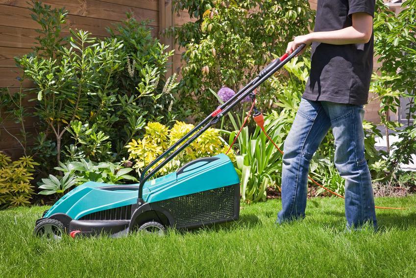 Koszenie trawy w ogrodzie przez mężczyznę oraz zalecana wysokość koszenia trawy i jej częstotliwość oraz pielęgnacja