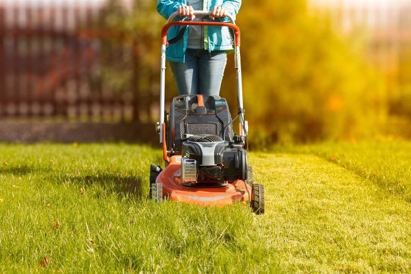 Mężczyzna koszący trawę, a także rodzaje traw i gatunki trawy do ogrodu, w tym trawy ozdobne, trawy łąkowe i trawy na trawnik