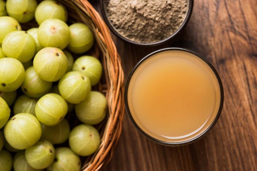 Sok agrestu w słoiku i świeże owoce, czyli przetwory z agrestu, a także najlepsze przepisy na innego rodzaju przetwory z agrestu